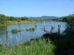 shallow blue  river with poles in water bordered by marshy green grasses and trees, mountains in background
