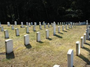 5 rows on white grave stones in graveyard with green grass