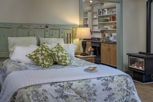 queen bed with green & white print bedspread, lamp on bedside table, kitchenette with bookshelves, woodstove on right