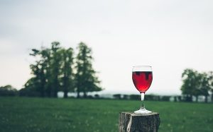 Glass of red wine on stump against view of field & evergreen trees by Jaime Street on UnSplash