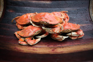 pile of five freshly cooked red dungeness crabs on old wooden seat by Don Frank Photography