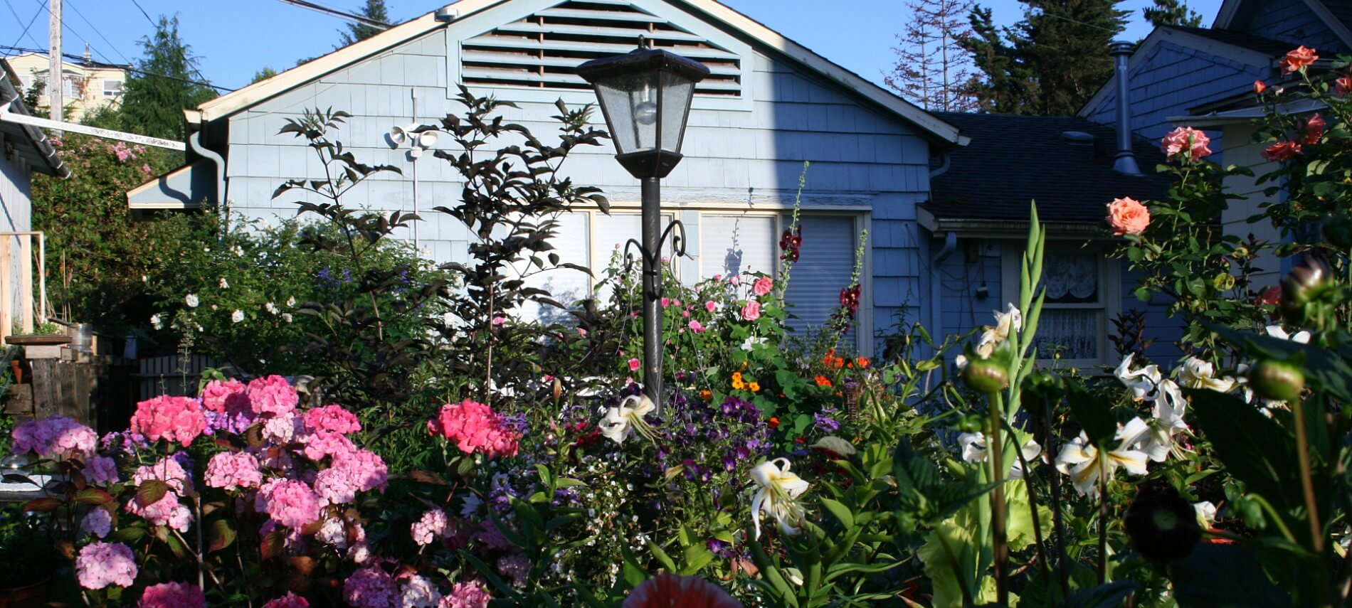 A garden with red, pink, white and yellow flowers next to a blue house.