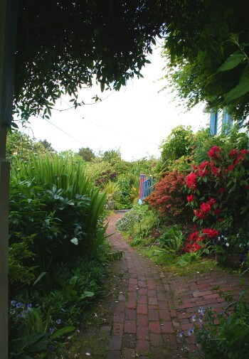Brick path through a shaded garden with red rose bushes and overhanging trees.